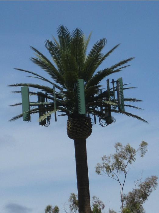 gsm-palm